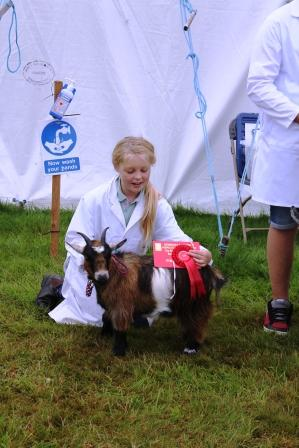 Newburygoatling